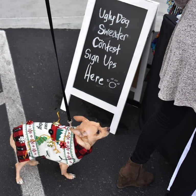 6 - Holiday Dog (ugly dog sweater contest) pg 1